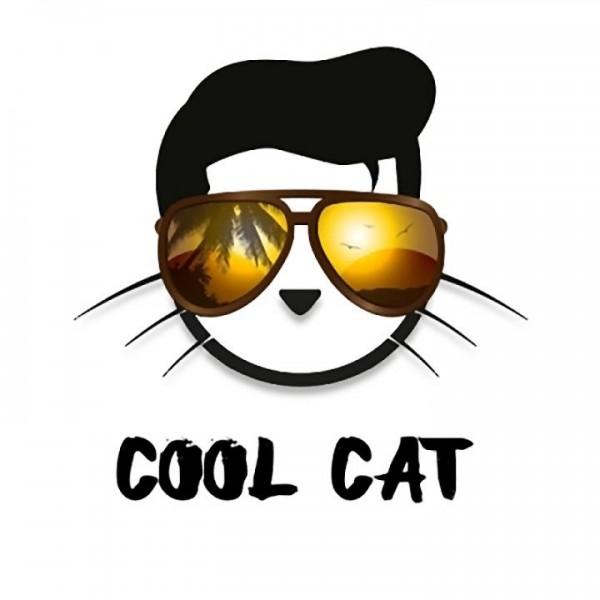 Copy Cat Cool Aroma 10ml