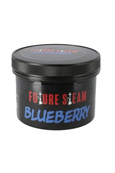 Futuresteam Dampfsteine Blueberry 150g